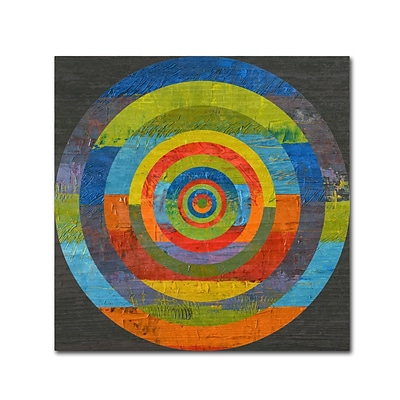 Trademark Fine Art Michelle Calkins Full Circle 18 x 18 Canvas Stretched (190836073436)