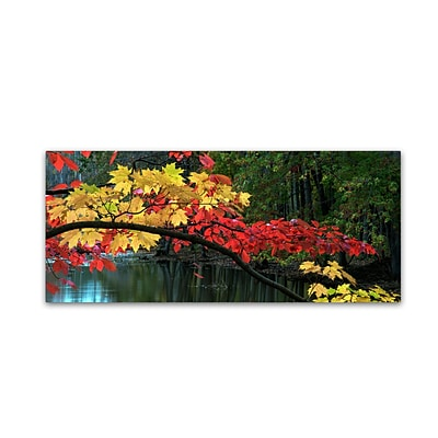 Trademark Fine Art Kurt Shaffer Autumn Red and Gold 8 x 19 Canvas Stretched (886511964037)
