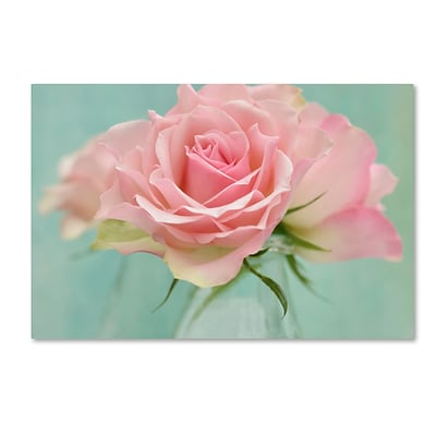 Trademark Fine Art Cora Niele Pink Roses 12 x 19 Canvas Stretched (190836260225)