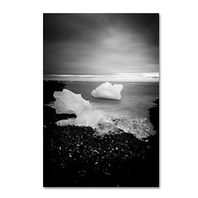 Trademark Fine Art Philippe Sainte-Laudy White as Ice 12 x 19 Canvas Stretched (190836333547)
