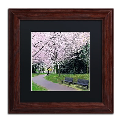 Trademark Fine Art CATeyes Spring Path 11 x 11 Matted Framed (190836099221)