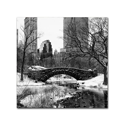 Trademark Fine Art Philippe Hugonnard Gapstow Bridge Central Park 18 x 18 Canvas Stretched (190836120017)