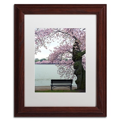Trademark Fine Art CATeyes Tranquility 11 x 14 Matted Framed (190836099672)