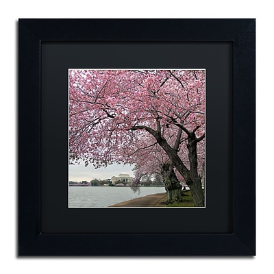 Trademark Fine Art CATeyes Tidal Basin Blossoms 11 x 11 Matted Framed (190836099269)