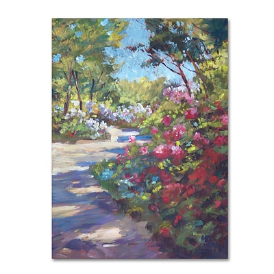 Trademark Fine Art David Lloyd Glover Arboretum Garden Path 14 x 19 Canvas Stretched (190836227808)