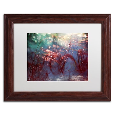 Trademark Fine Art Beata Czyzowska Young Adventures of Red Continue 11 x 14 Matted Framed (190836182206)