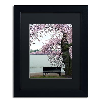 Trademark Fine Art CATeyes Tranquility 11 x 14 Matted Framed (190836099481)