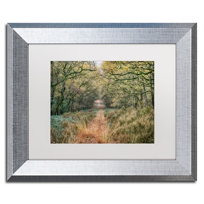 Trademark Fine Art Cora Niele Autumn Walk 11 x 14 Matted Framed (190836315741)