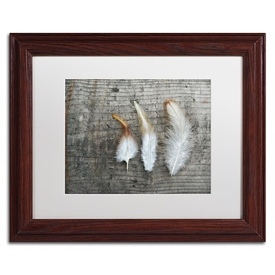 Trademark Fine Art Cora Niele Three Feathers on Wood 11 x 14 Matted Framed (190836255788)