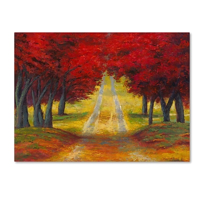 Trademark Fine Art Daniel Moises Autumn Pathway 14 x 19 Canvas Stretched (190836277667)