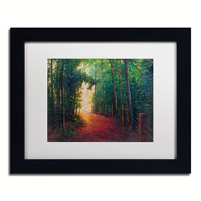 Trademark Fine Art Daniel Moises Misty Trail 11 x 14 Matted Framed (190836277834)