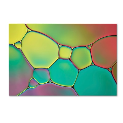 Trademark Fine Art Cora Niele Stained Glass I 12 x 19 Canvas Stretched (190836254422)