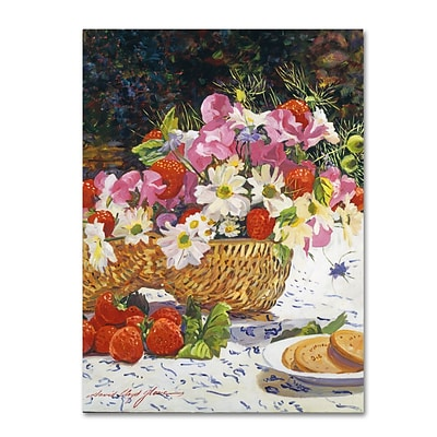 Trademark Fine Art David Lloyd Glover The Summer Picnic 14 x 19 Canvas Stretched (190836188123)