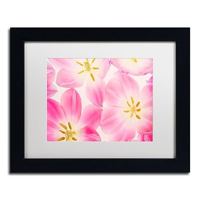 Trademark Fine Art Cora Niele Three Cerise Pink Tulips 11 x 14 Matted Framed (190836310067)