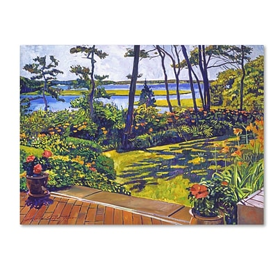 Trademark Fine Art David Lloyd Glover Ocean Lagoon Garden 14 x 19 Canvas Stretched (190836187980)