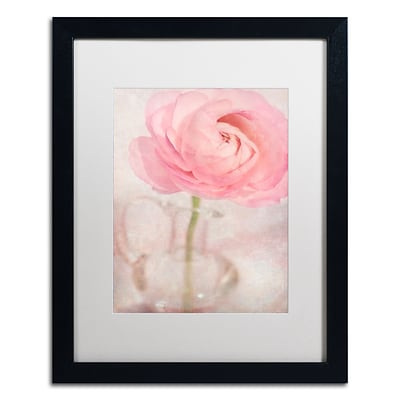 Trademark Fine Art Cora Niele Single Rose Pink Flower 16 x 20 Matted Framed (190836260492)