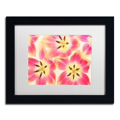 Trademark Fine Art Cora Niele Cerise and Yellow Tulips 11 x 14 Matted Framed (190836256648)
