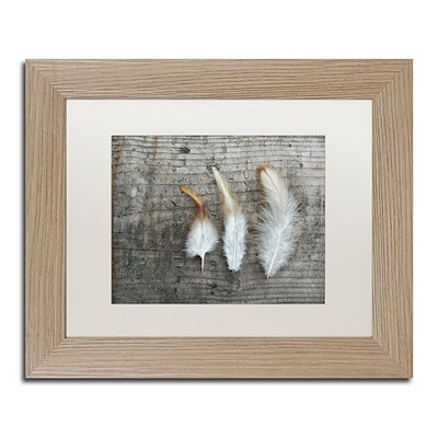 Trademark Fine Art Cora Niele Three Feathers on Wood 11 x 14 Matted Framed (190836255764)