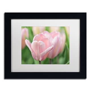 Trademark Fine Art Cora Niele Pink Tulip Baronesse 11 x 14 Matted Framed (190836248766)