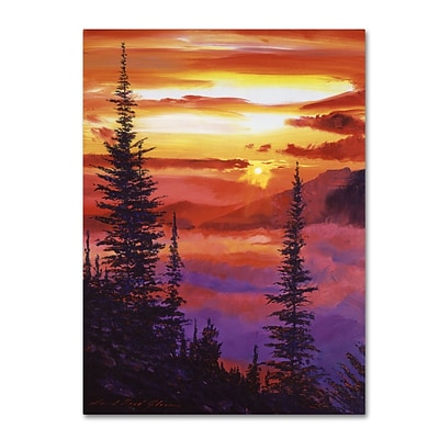 Trademark Fine Art David Lloyd Glover Golden Moment 14 x 19 Canvas Stretched (190836225422)