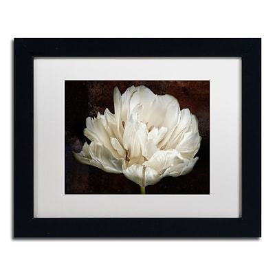 Trademark Fine Art Cora Niele Double White Tulip 11 x 14 Matted Framed (190836257621)