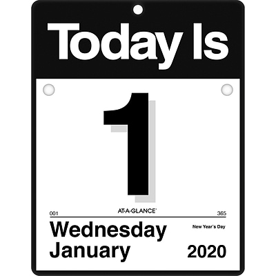 2020 AT-A-GLANCE 9 1/2 x 12 Today Is Daily Wall Calendar (K4-00-20)
