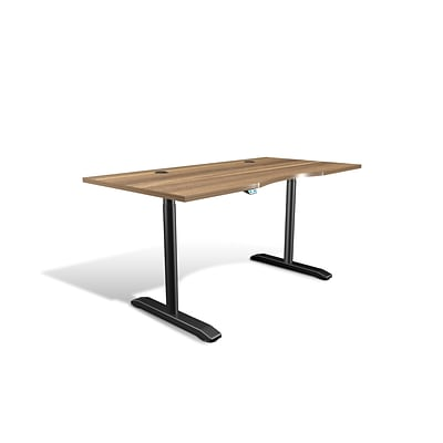 Unique Furniture 100 Collection Electric Height Adjustable Standing Desk 65 Walnut (76432-WAL)