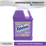 Fabuloso Professional All-Purpose Cleaner, Lavender, 128 Oz. (US05253A)