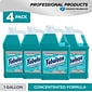 Fabuloso Professional All-Purpose Cleaner, Ocean Cool, 128 Oz., 4/Carton (US05252A)