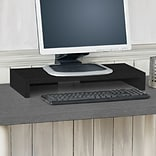 Way Basics 19.7W Simple Computer Monitor Stand, Black (WB-STAND-BK)