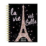 July 2019 - June 2020 TF Publishing 6.5 x 8 Medium Daily Weekly Monthly Planner, Paris Sparkle (20