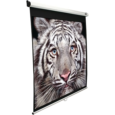 Elite Screens M100v 100 Manual Pull-down B Series Projection Screen (4:3 Format; 60 X 80)