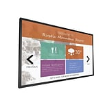 Philips 43 Multi Touch Display (43BDL4051T)