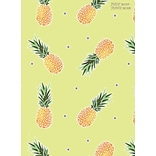 Tf Publishing 2018 Academic Year Pineapples Monthly Planner (18-4243A)