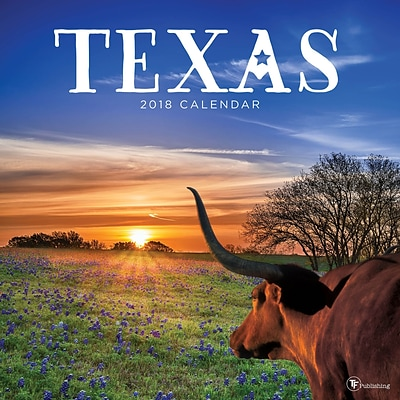 Tf Publishing 2018 Texas Wall Calendar (18-1043)