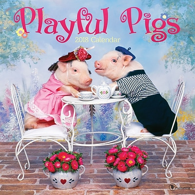 Tf Publishing 2018 Playful Pigs Wall Calendar (18-1035)