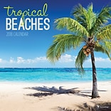 Tf Publishing 2018 Tropical Beaches Wall Calendar (18-1097)
