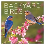 2019 TF Publishing 7 X 7 Backyard Birds Mini Calendar (19-2001)