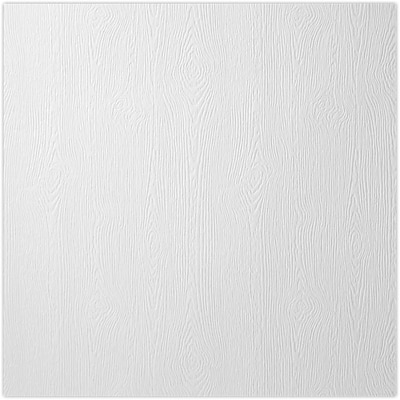 LUX 12 x 12 Paper 1000/Pack, White Birch Woodgrain (1212-P-S02-1000)