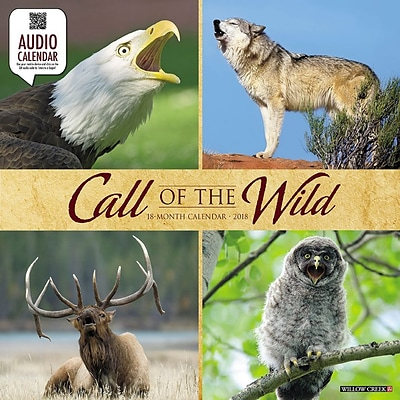 2018 Willow Creek Press 12 x 12 Call of the Wild Wall Calendar (44378)