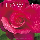 2018 Willow Creek Press 12 x 12 Flowers Wall Calendar (44910)