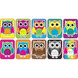 Color Owls Mini Whiteboard Erasers Non Magnetic, 10/pk (ASH78007)