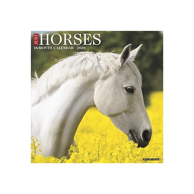 2020 Willow Creek 12 x 12 Wall Calendar, Horses, Multicolor (06726)