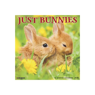 2020 Willow Creek 12 x 12 Wall Calendar, Just Bunnies, Multicolor (05637)