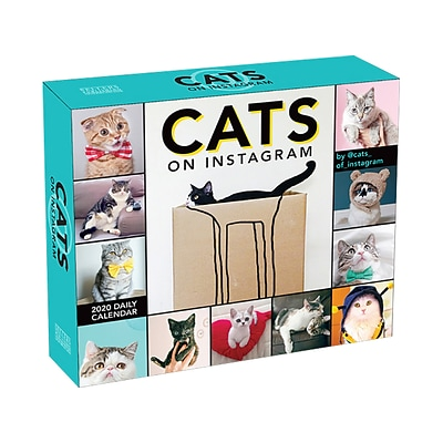 2020 Assorted Publishers 5 x 6 Desk Calendar, Cats on Instagram, Multicolor (CB0895)