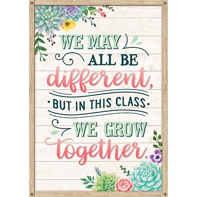 Teacher Created Resources 13 x 19 We May All Be Different, But In This Class We Grow Together Positive Poster (TCR7442)