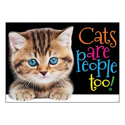 Trend 13.375 x 19 Cats are people too! ARGUS® Poster (T-A67084)