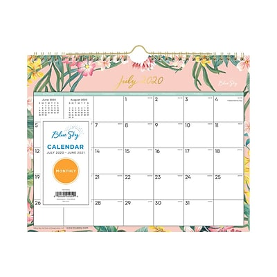 2020-2021 Blue Sky 8.75 x 11 Wall Calendar, Allena, Multicolor (119418)