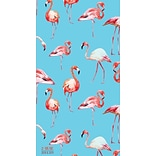 Tf Publishing 2018 Flamingos 2 Yr Pocket Planner (18-7223)