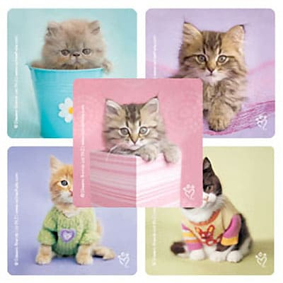 "SmileMakers® Rachael Hale Cats Stickers; 2-1/2""H x 2-1/2""W, 100/Box"